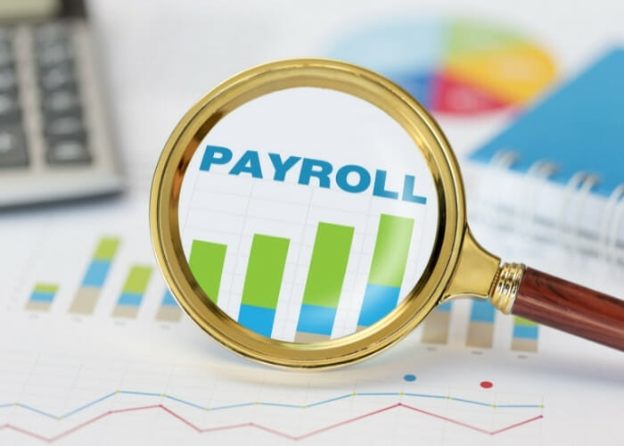 How to choose a payroll service for your company in Canada